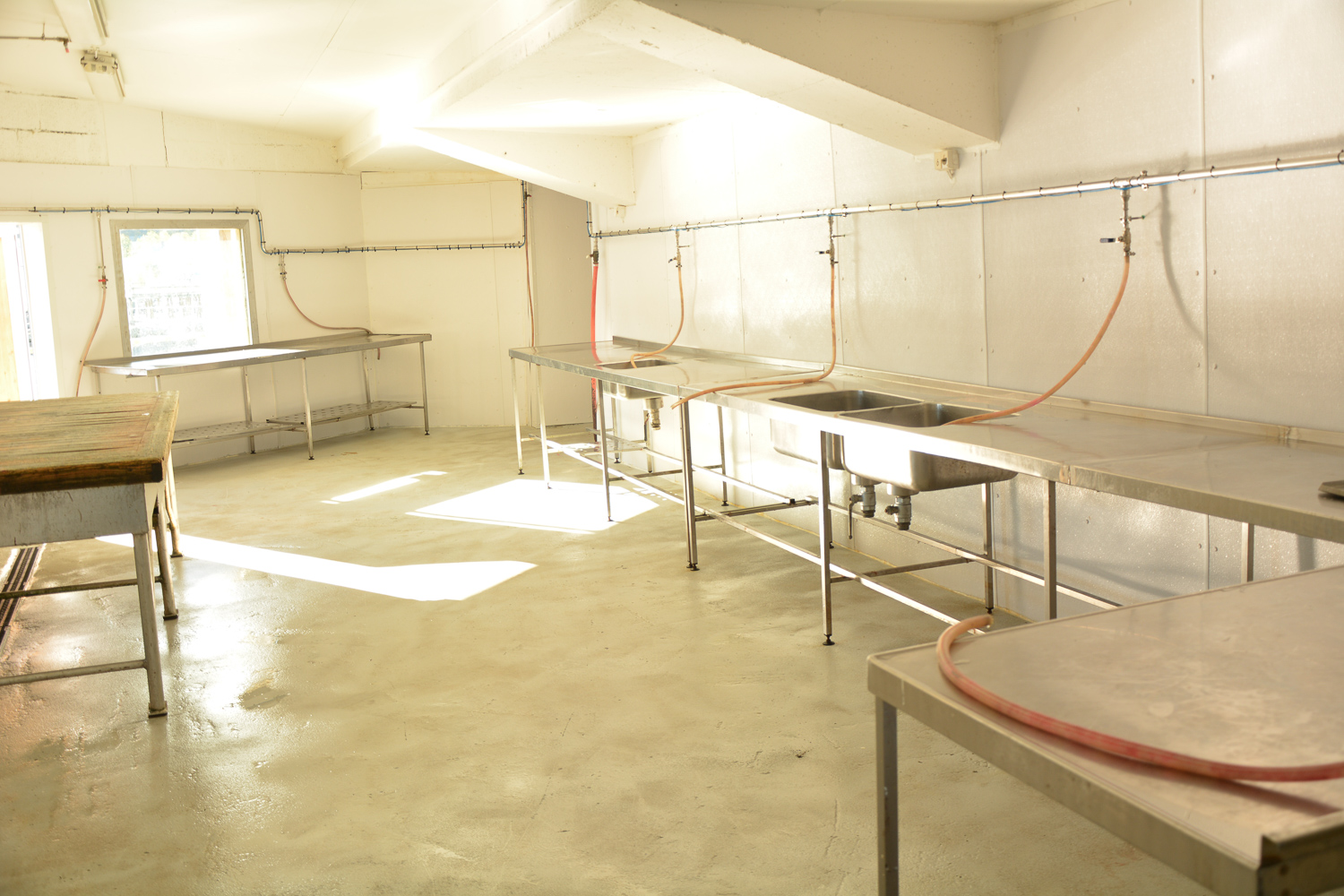 Filleting room